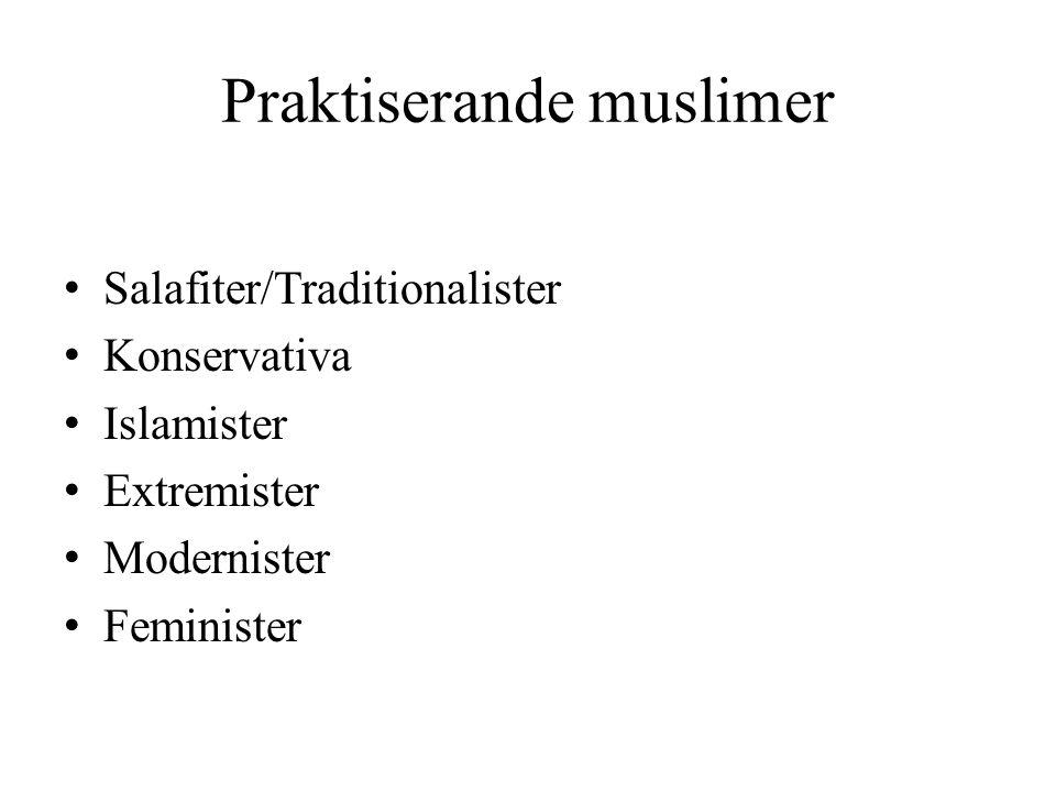 Praktiserande muslimer Salafiter/Traditionalister Konservativa Islamister Extremister Modernister Feminister