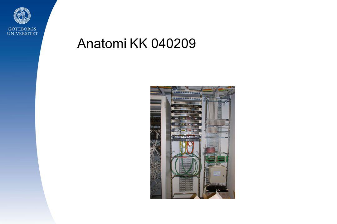 Anatomi KK 040209