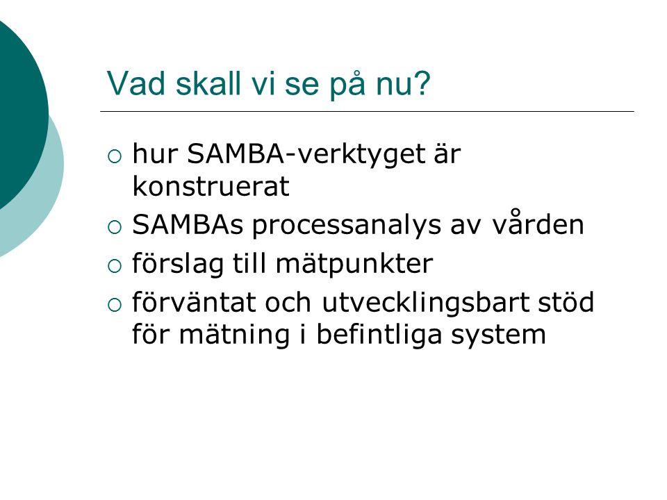 Vad skall vi se på nu?  hur SAMBA-verktyget är konstruerat  SAMBAs processanalys av vården  förslag till mätpunkter  förväntat och utvecklingsbart