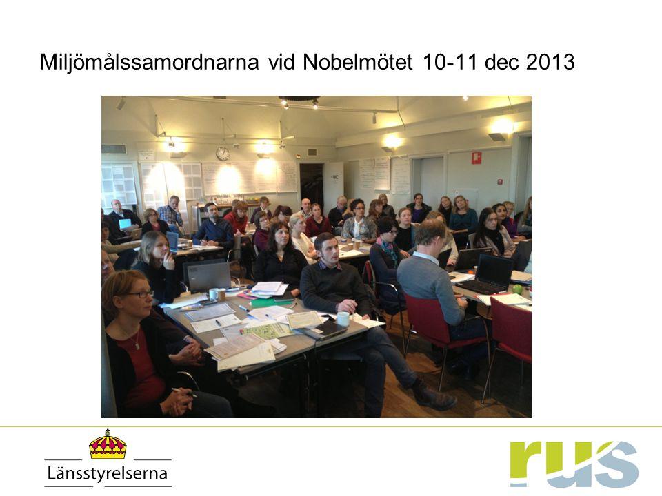 Miljömålssamordnarna vid Nobelmötet 10-11 dec 2013