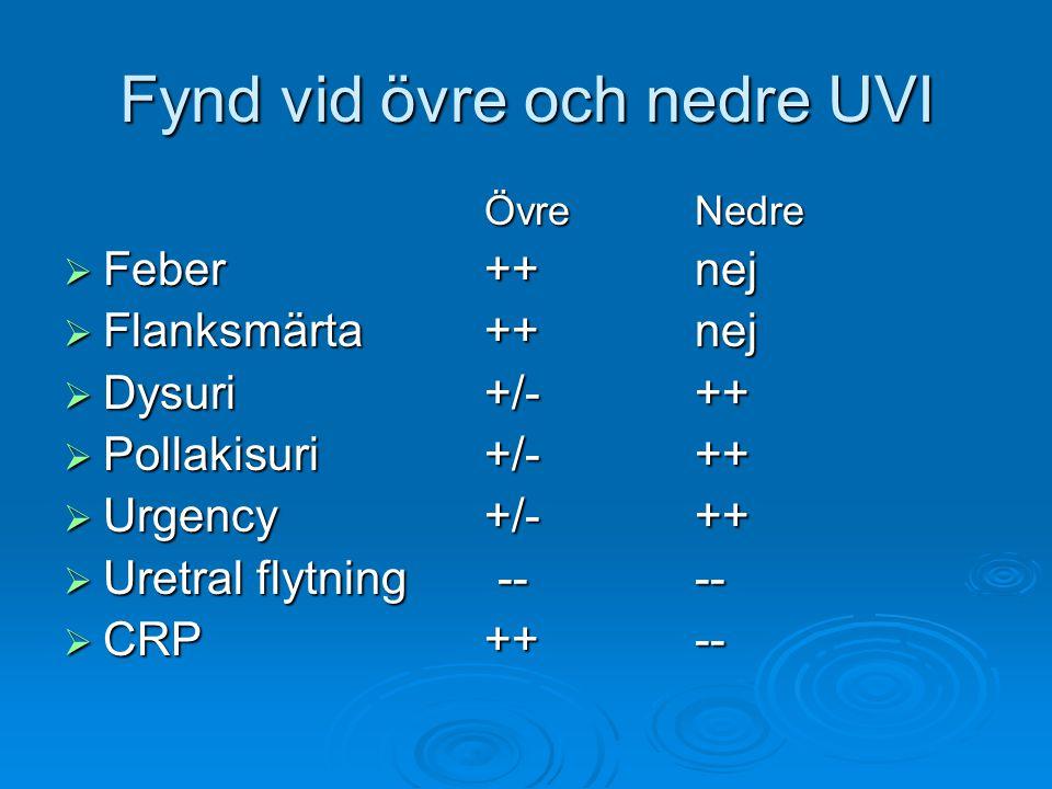 Fynd vid övre och nedre UVI ÖvreNedre  Feber++nej  Flanksmärta++nej  Dysuri+/-++  Pollakisuri +/-++  Urgency+/-++  Uretral flytning ----  CRP +