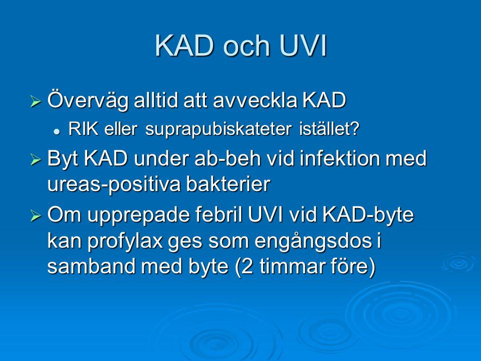 KAD och UVI  Överväg alltid att avveckla KAD RIK eller suprapubiskateter istället? RIK eller suprapubiskateter istället?  Byt KAD under ab-beh vid i