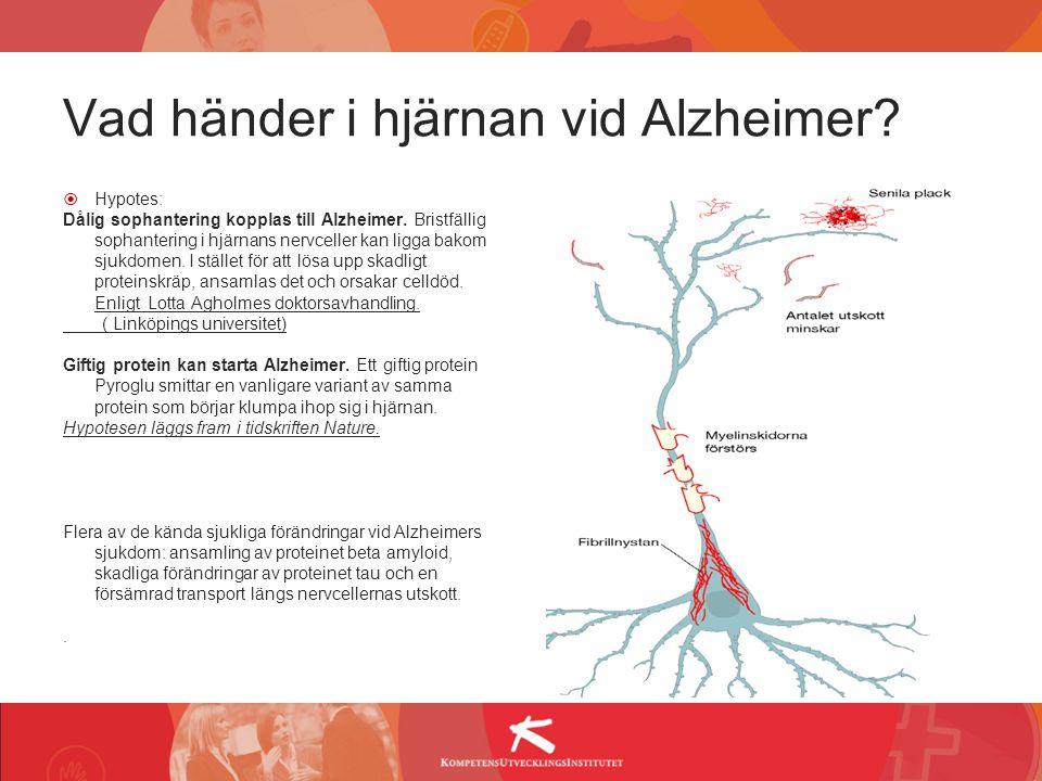Vad händer i hjärnan vid Alzheimer?  Hypotes: Dålig sophantering kopplas till Alzheimer. Bristfällig sophantering i hjärnans nervceller kan ligga bak
