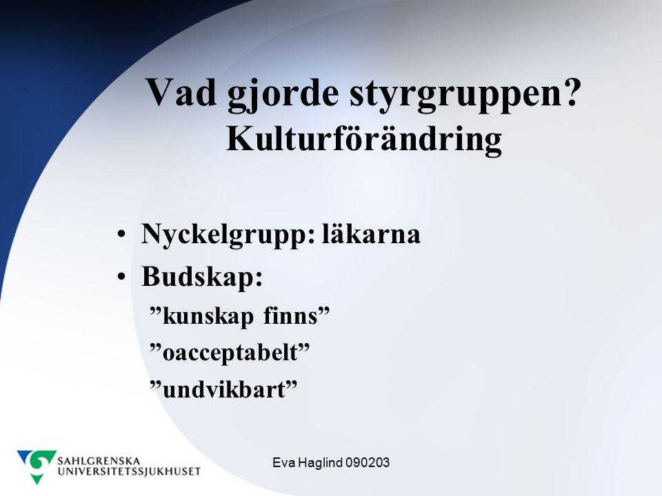 """Eva Haglind 090203 Vad gjorde styrgruppen? Kulturförändring Nyckelgrupp: läkarna Budskap: """"kunskap finns"""" """"oacceptabelt"""" """"undvikbart"""""""