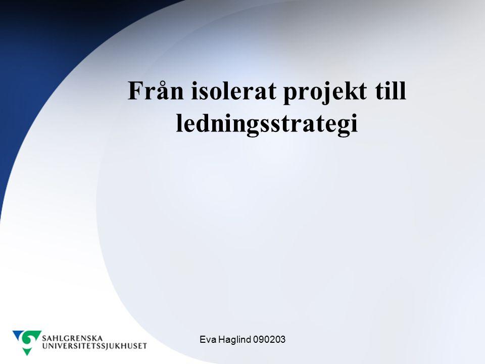 Eva Haglind 090203 Från isolerat projekt till ledningsstrategi