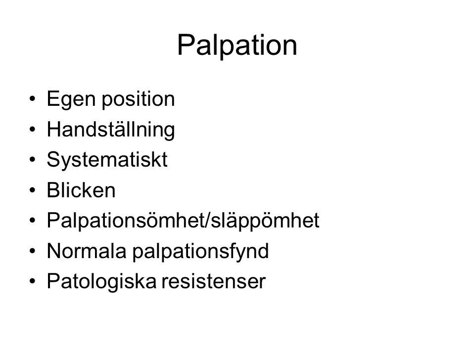 Palpation Egen position Handställning Systematiskt Blicken Palpationsömhet/släppömhet Normala palpationsfynd Patologiska resistenser