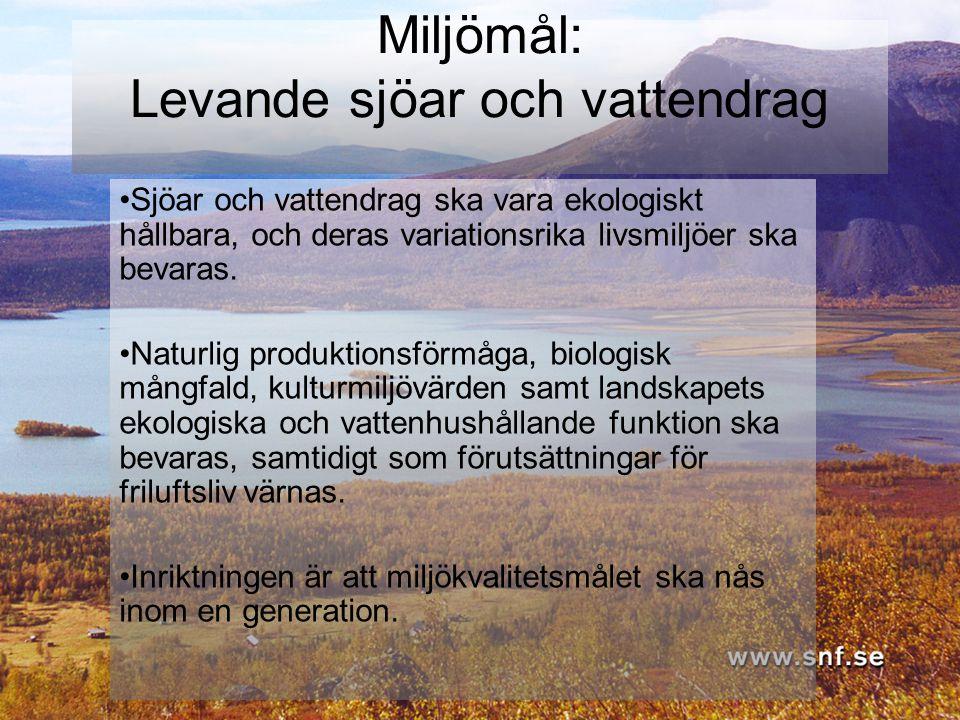 Miljömål: Levande sjöar och vattendrag Sjöar och vattendrag ska vara ekologiskt hållbara, och deras variationsrika livsmiljöer ska bevaras. Naturlig p