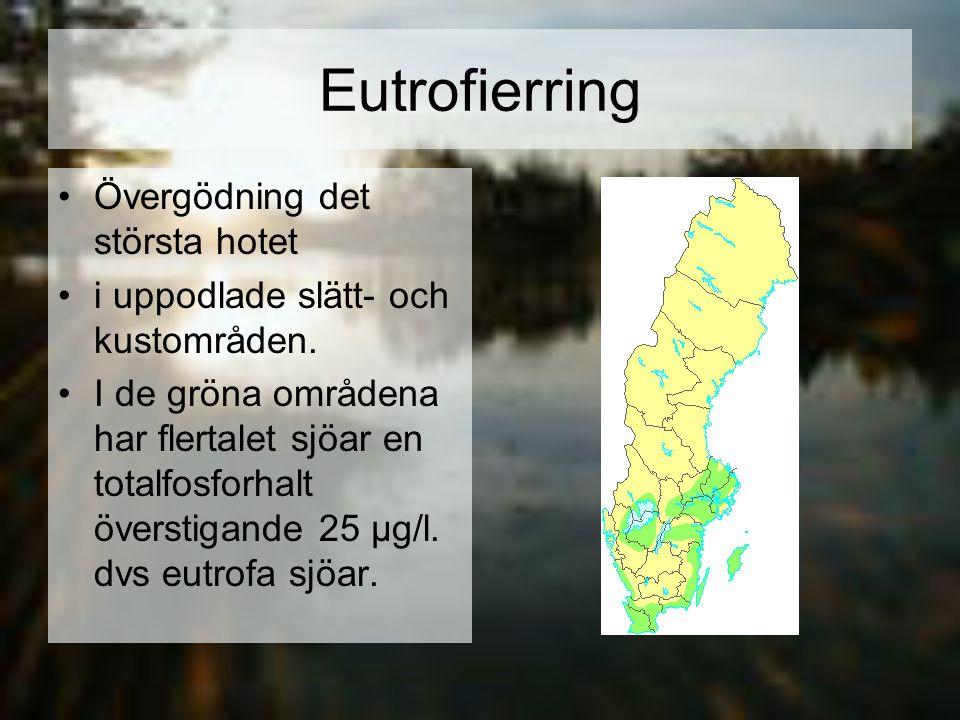 Eutrofierring Övergödning det största hotet i uppodlade slätt- och kustområden. I de gröna områdena har flertalet sjöar en totalfosforhalt överstigand