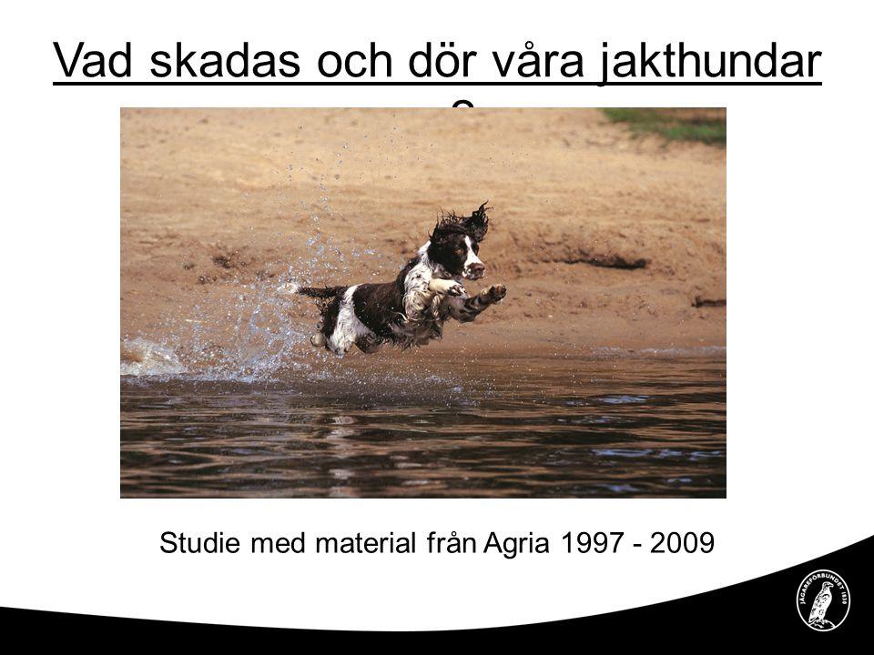 Bakgrund Agria försäkrar cirka 60 procent av landets hundar Antalet registrerade jakthundar är relativt konstant Antalet försäkrade jakthundar ökar konstant Årligen jagas det cirka 5 miljoner jakthunddagar Jakthundar endast överrepresenterade i traumatiska skador