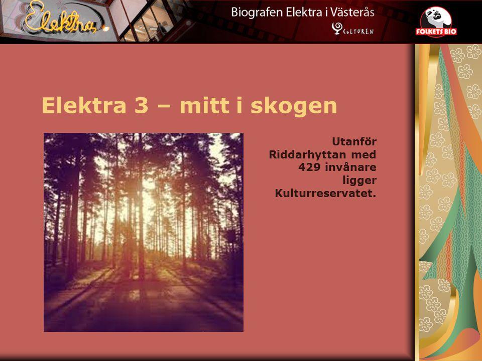 Elektra 3 – mitt i skogen Utanför Riddarhyttan med 429 invånare ligger Kulturreservatet.