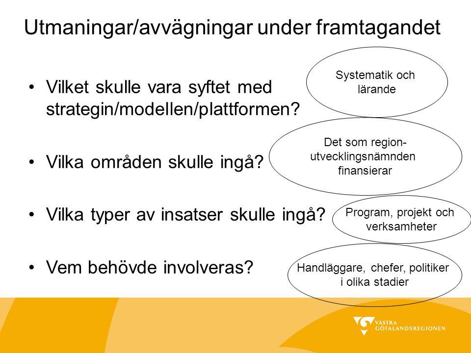 Utmaningar/avvägningar under framtagandet Vilket skulle vara syftet med strategin/modellen/plattformen.