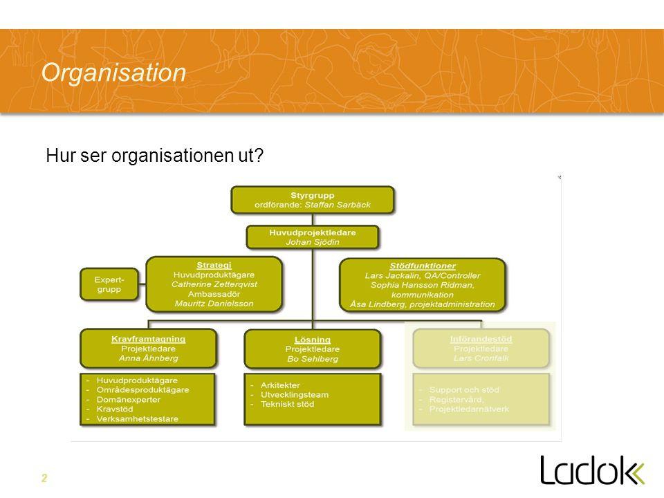 2 Organisation Hur ser organisationen ut