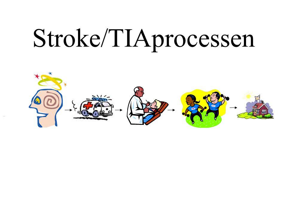 Uppdrag för stroke/TIA- processen Att kartlägga, designa, ta fram underlag för beslut om, planera, kontrollera och följa upp Stroke/TIAprocessen utifrån patientens behov, utifrån ett helhetsperspektiv på organisationen samt med effektiv resursförbrukning……..