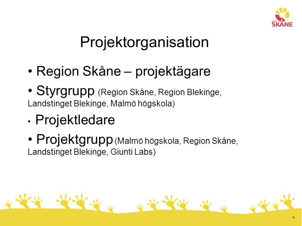 16 Projektorganisation Region Skåne – projektägare Styrgrupp (Region Skåne, Region Blekinge, Landstinget Blekinge, Malmö högskola) Projektledare Proje