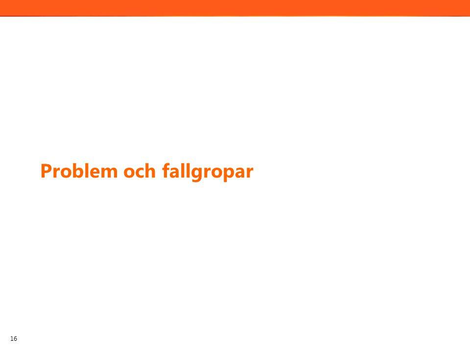 Problem och fallgropar 16