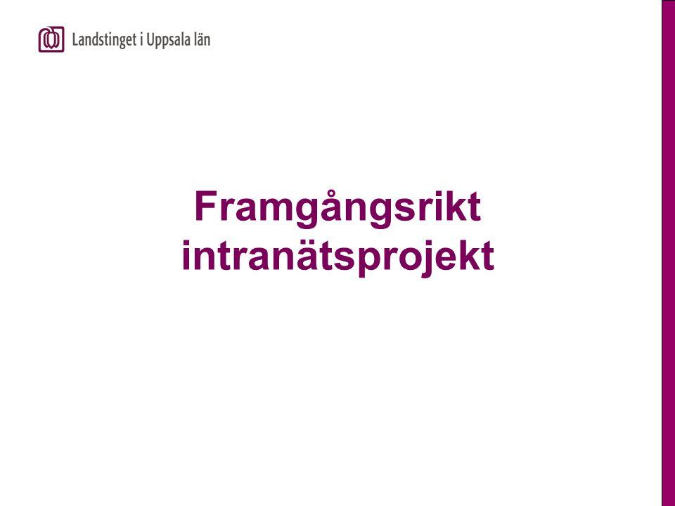 Projektledaren ska kunna  Inspirera och motivera  Lyssna  Fatta beslut och stå för dem  Gasa/bromsa  Organisera