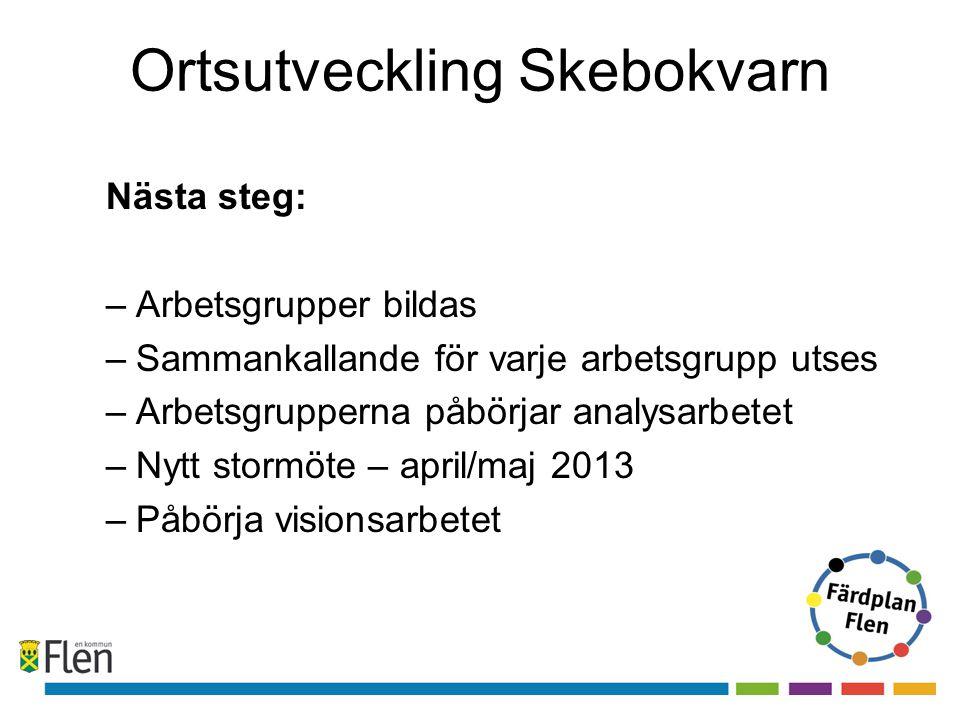 Ortsutveckling Skebokvarn Nästa steg: –Arbetsgrupper bildas –Sammankallande för varje arbetsgrupp utses –Arbetsgrupperna påbörjar analysarbetet –Nytt