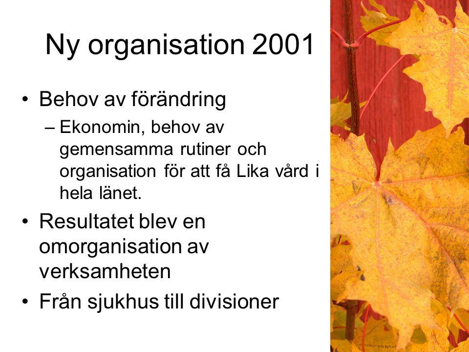 Ny organisation 2001 Behov av förändring –Ekonomin, behov av gemensamma rutiner och organisation för att få Lika vård i hela länet.