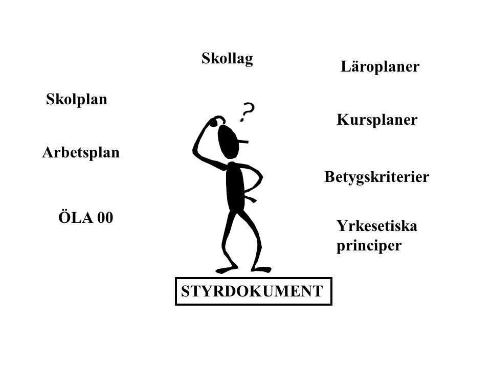 Skolplan för Göteborg 2001 - 2004 Läraren klargör de mål och krav som finns I samverkan med barnet/den unge och dess föräldrar tas en IUP fram som utgår från den enskildes förutsättningar Alla barn och unga skall ha en IUP Pedagogisk dokumentation skall gälla från förskola till gymnasieskola