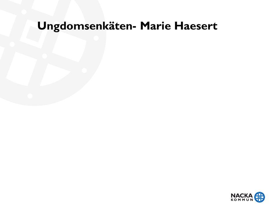 Ungdomsenkäten- Marie Haesert
