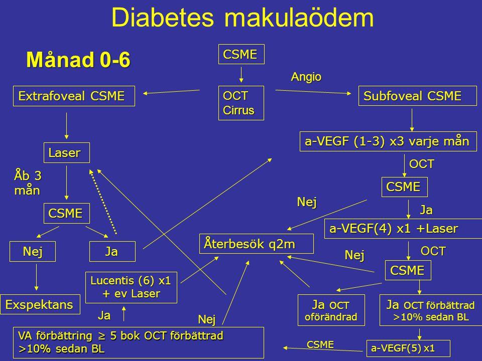 Diabetes makulaödemCSME Extrafoveal CSME Ja a-VEGF (1-3) x3 varje mån Exspektans Laser Nej CSME Subfoveal CSME Åb 3 mån CSME Nej Återbesök q2m Ja OCT oförändrad Ja OCT förbättrad >10% sedan BL OCT Cirrus OCT a-VEGF(4) x1 +Laser Ja CSME Nej OCT a-VEGF(5) x1 VA förbättring ≥ 5 bok OCT förbättrad >10% sedan BL Ja CSME Angio Lucentis (6) x1 + ev Laser Nej Månad 0-6
