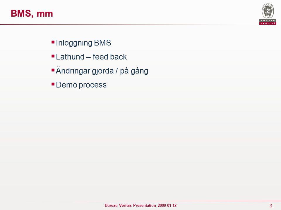 3 Bureau Veritas Presentation 2009-01-12 BMS, mm  Inloggning BMS  Lathund – feed back  Ändringar gjorda / på gång  Demo process