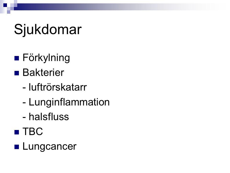 Sjukdomar Förkylning Bakterier - luftrörskatarr - Lunginflammation - halsfluss TBC Lungcancer