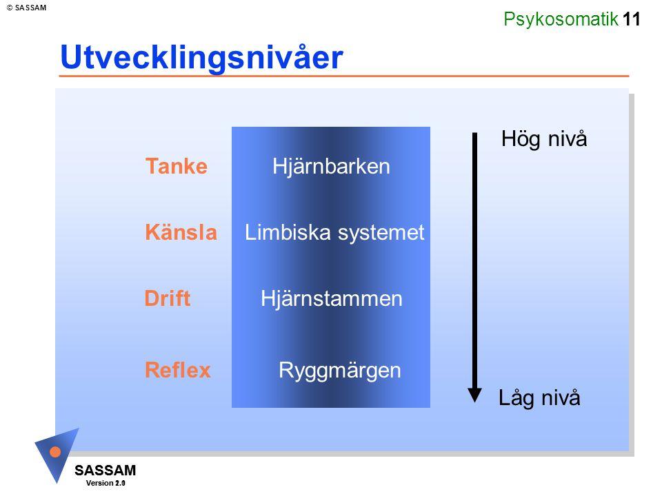 Psykosomatik 11 SASSAM Version 1.1 © SASSAM SASSAM Version 2.0 Utvecklingsnivåer Hjärnbarken Limbiska systemet Hjärnstammen Ryggmärgen Hög nivå Låg ni
