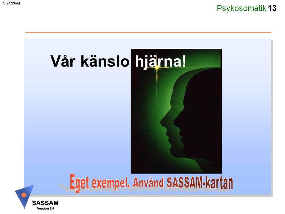 Psykosomatik 13 SASSAM Version 1.1 © SASSAM SASSAM Version 2.0 Vår känslo hjärna!