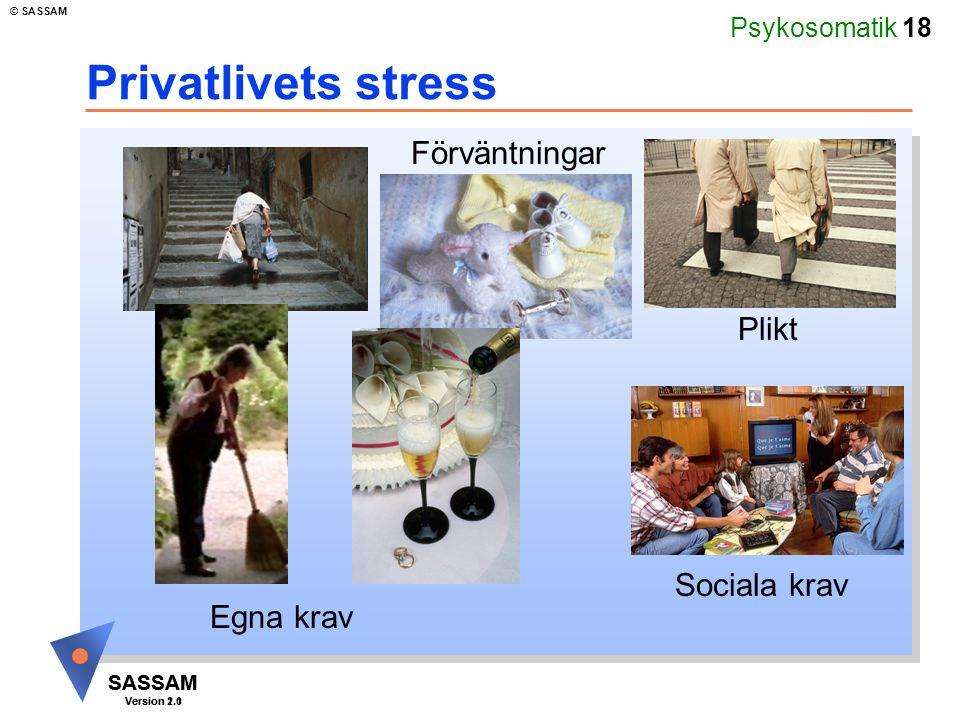 Psykosomatik 18 SASSAM Version 1.1 © SASSAM SASSAM Version 2.0 Privatlivets stress Förväntningar Plikt Sociala krav Egna krav