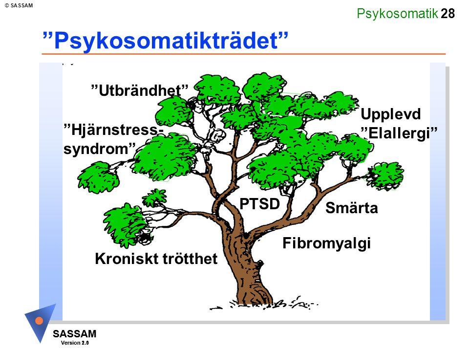 """Psykosomatik 28 SASSAM Version 1.1 © SASSAM SASSAM Version 2.0 """"Psykosomatikträdet"""" Fibromyalgi """"Utbrändhet"""" Upplevd """"Elallergi"""" """"Hjärnstress- syndrom"""