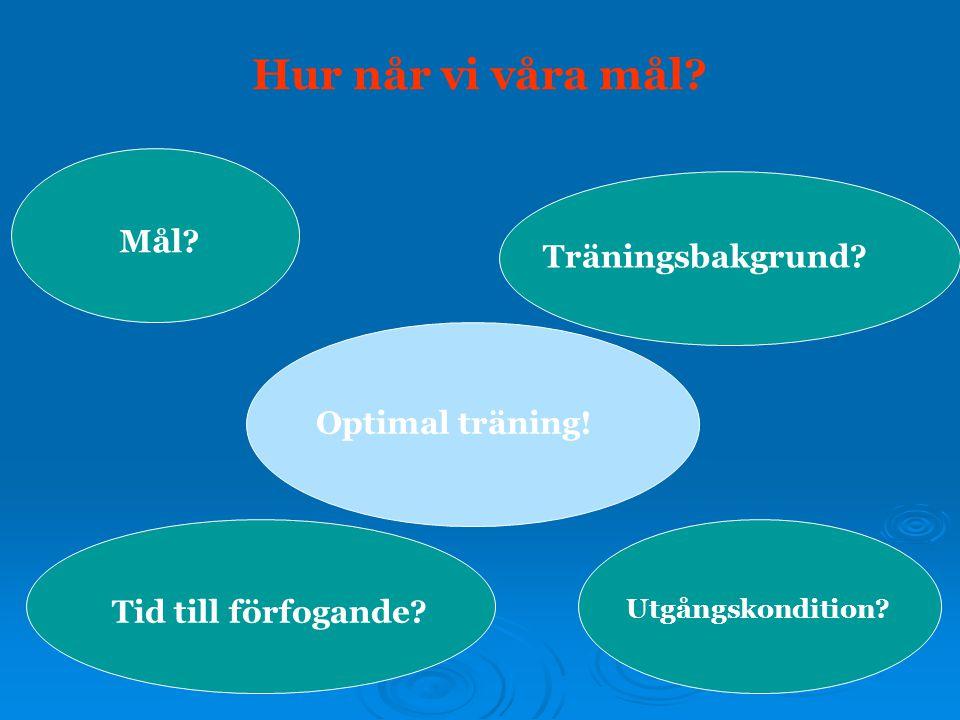 Hur når vi våra mål? Mål? Tid till förfogande? Utgångskondition? Träningsbakgrund? Optimal träning!