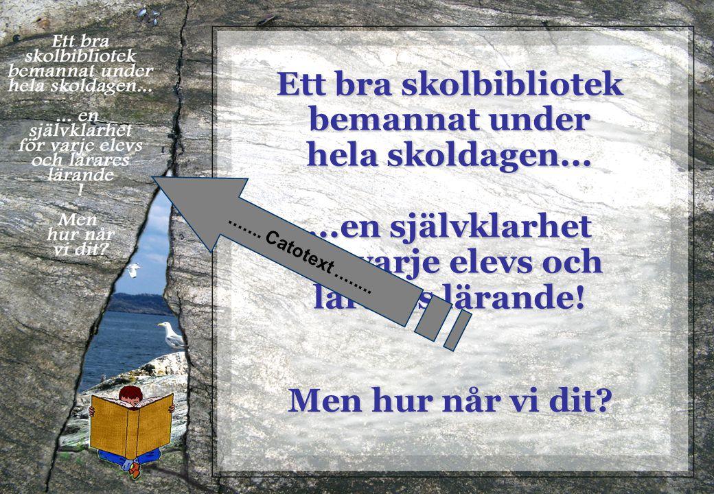 De svenska skolbiblioteken har i många fall en förskräckande låg standard.