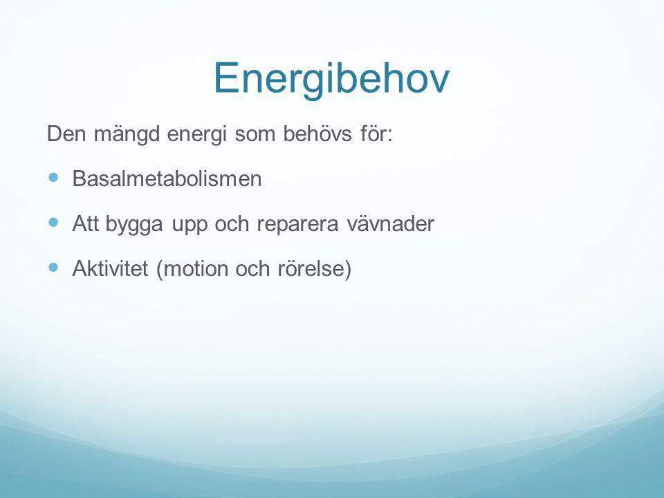 Energibehov Den mängd energi som behövs för: Basalmetabolismen Att bygga upp och reparera vävnader Aktivitet (motion och rörelse)
