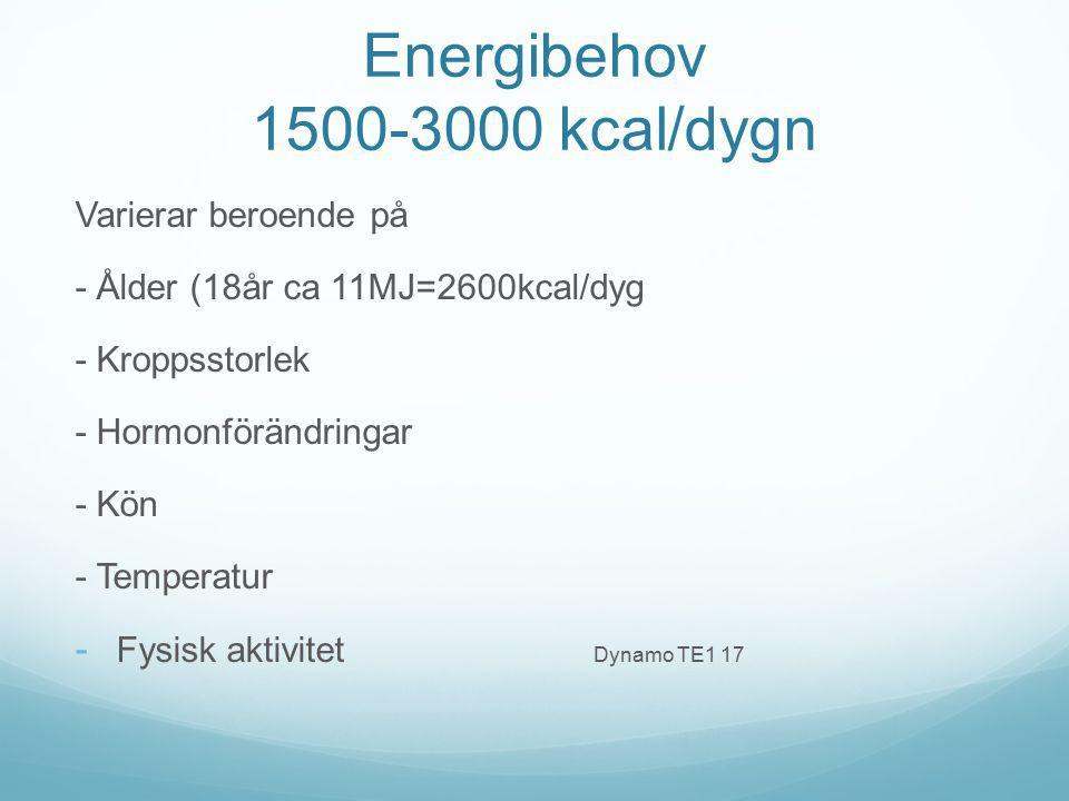 Energibehov 1500-3000 kcal/dygn Varierar beroende på - Ålder (18år ca 11MJ=2600kcal/dyg - Kroppsstorlek - Hormonförändringar - Kön - Temperatur - Fysi