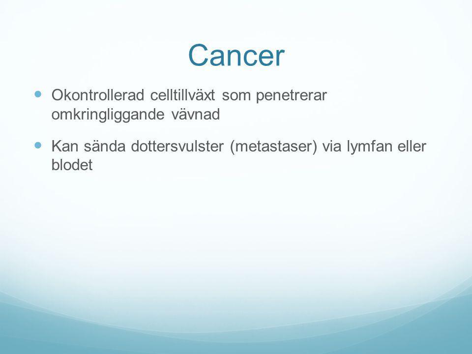 Cancer Okontrollerad celltillväxt som penetrerar omkringliggande vävnad Kan sända dottersvulster (metastaser) via lymfan eller blodet