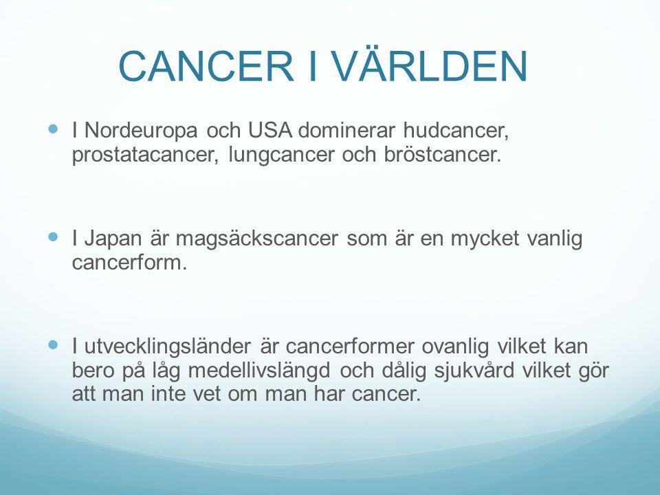 CANCER I VÄRLDEN I Nordeuropa och USA dominerar hudcancer, prostatacancer, lungcancer och bröstcancer. I Japan är magsäckscancer som är en mycket vanl