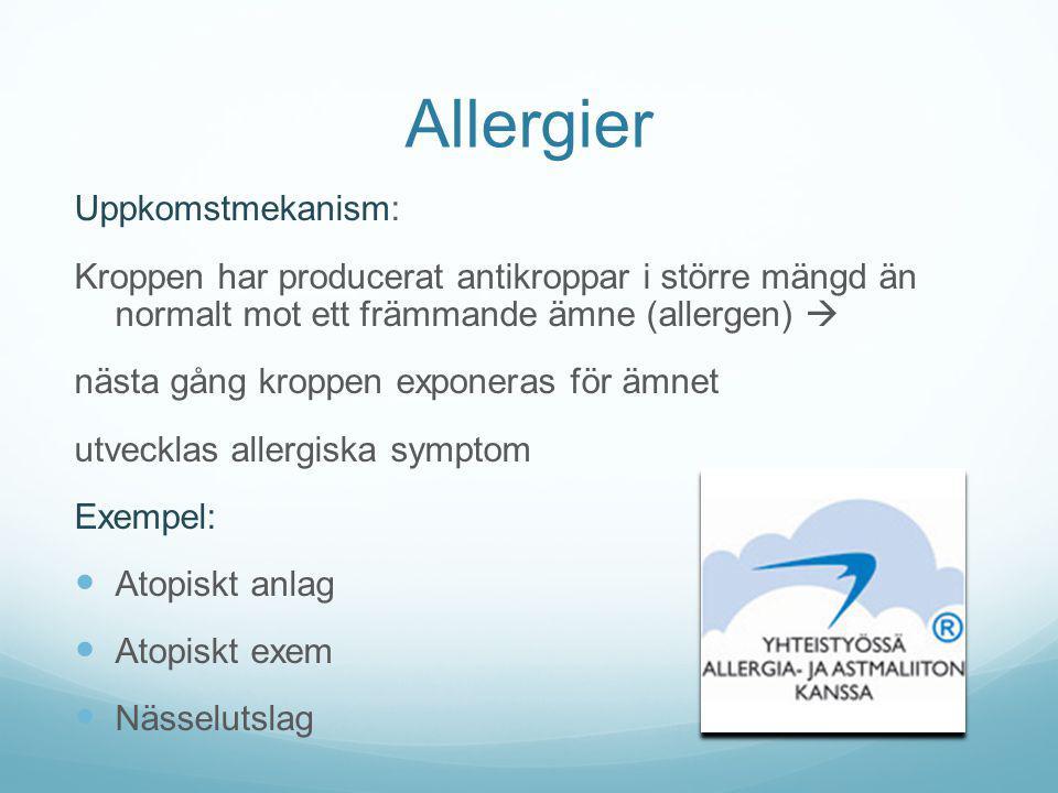 Allergier Uppkomstmekanism: Kroppen har producerat antikroppar i större mängd än normalt mot ett främmande ämne (allergen)  nästa gång kroppen expone