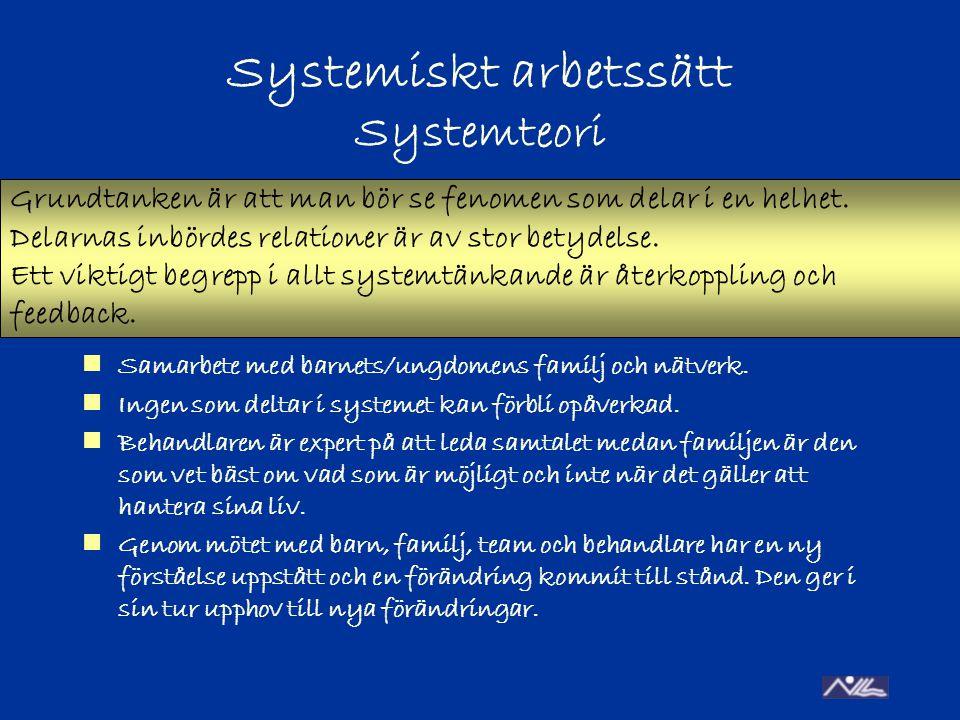 Systemiskt arbetssätt Systemteori Samarbete med barnets/ungdomens familj och nätverk.