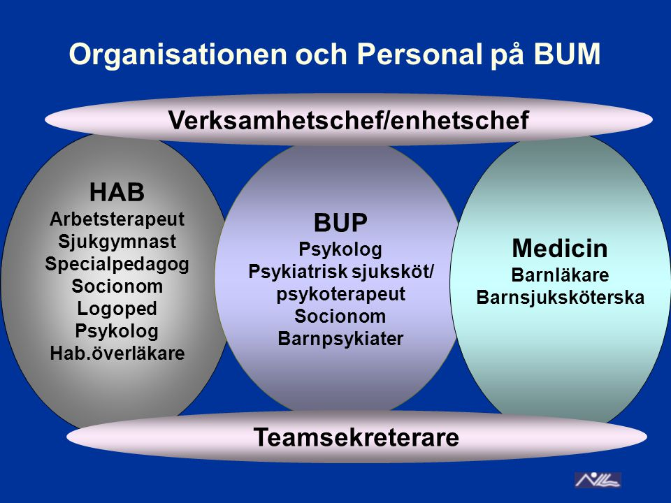 Organisationen och Personal på BUM HAB Arbetsterapeut Sjukgymnast Specialpedagog Socionom Logoped Psykolog Hab.överläkare BUP Psykolog Psykiatrisk sju