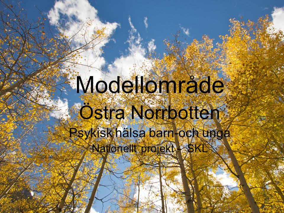 Modellområde Östra Norrbotten Psykisk hälsa barn-och unga Nationellt projekt - SKL