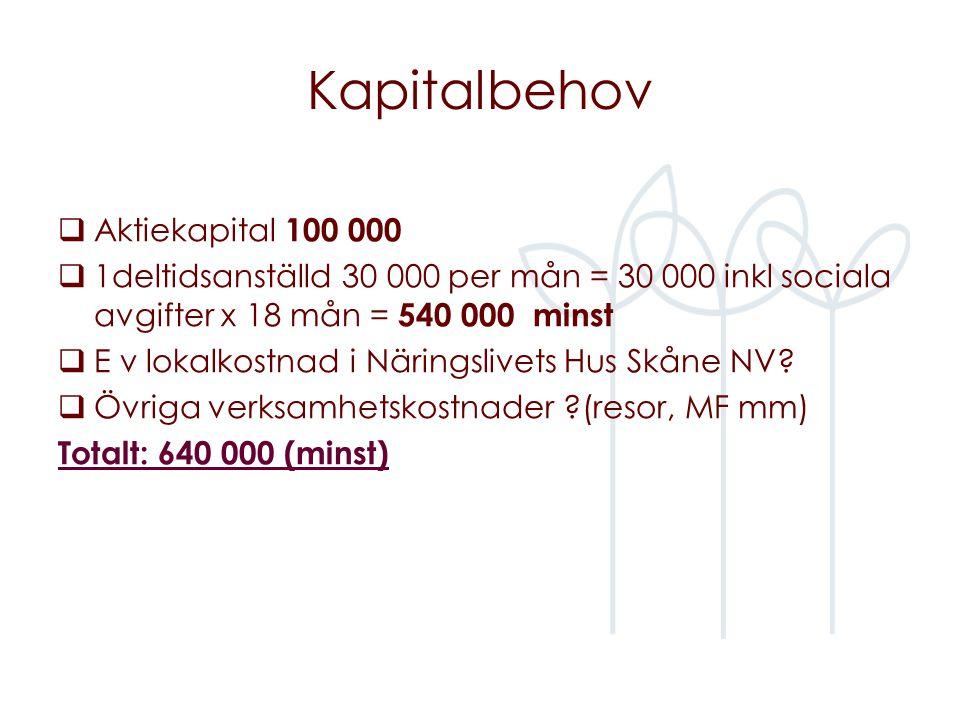 Kapitalbehov  Aktiekapital 100 000  1deltidsanställd 30 000 per mån = 30 000 inkl sociala avgifter x 18 mån = 540 000 minst  E v lokalkostnad i Näringslivets Hus Skåne NV.