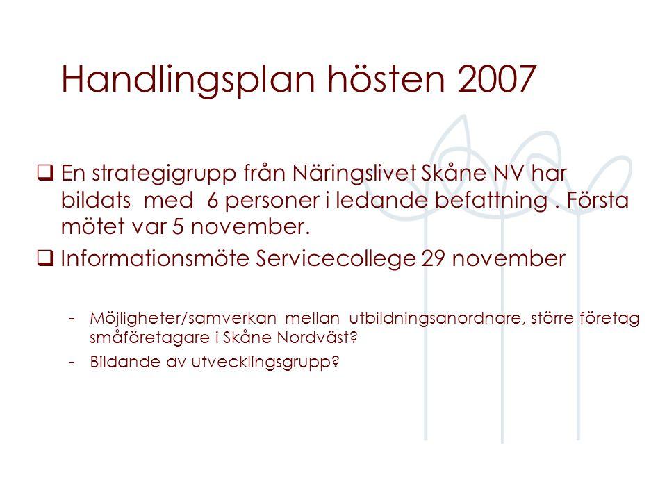 Handlingsplan hösten 2007  En strategigrupp från Näringslivet Skåne NV har bildats med 6 personer i ledande befattning.