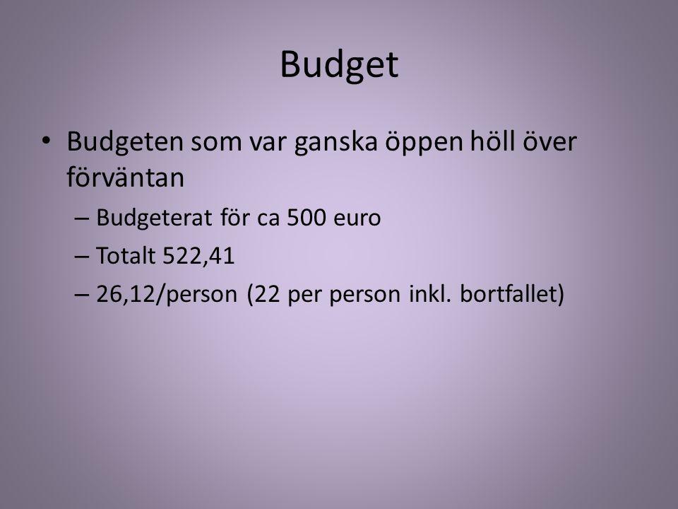 Budget Budgeten som var ganska öppen höll över förväntan – Budgeterat för ca 500 euro – Totalt 522,41 – 26,12/person (22 per person inkl. bortfallet)