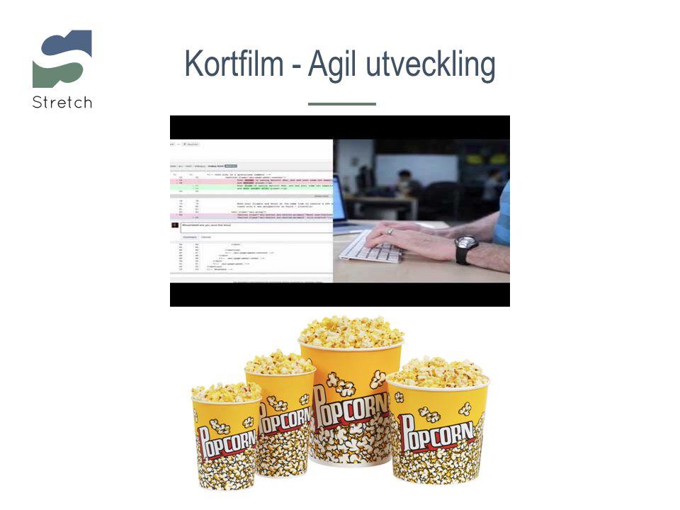 Kortfilm - Agil utveckling