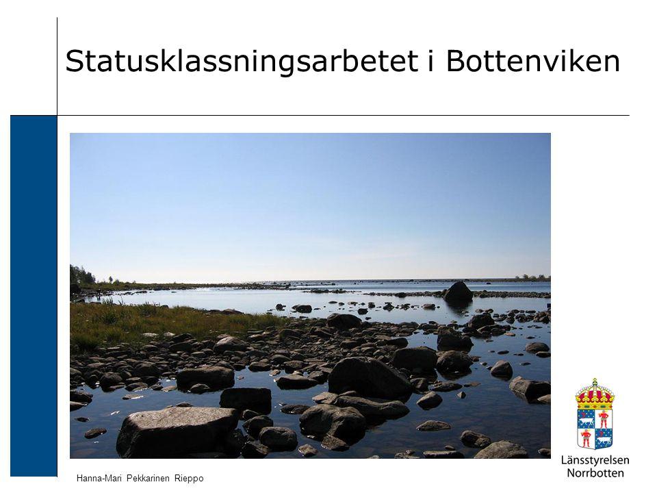 Statusklassningsarbetet i Bottenviken Hanna-Mari Pekkarinen Rieppo