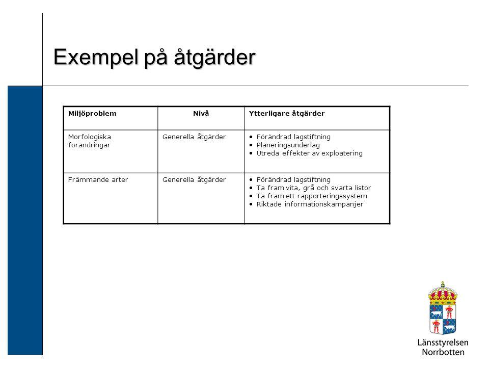 MiljöproblemNivåYtterligare åtgärder Morfologiska förändringar Generella åtgärder  Förändrad lagstiftning  Planeringsunderlag  Utreda effekter av e