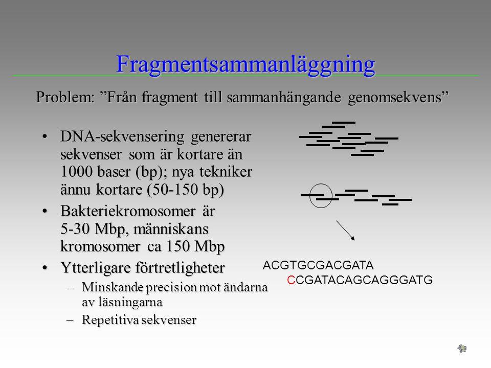 Fragmentsammanläggning DNA-sekvensering genererar sekvenser som är kortare än 1000 baser (bp); nya tekniker ännu kortare (50-150 bp)DNA-sekvensering g