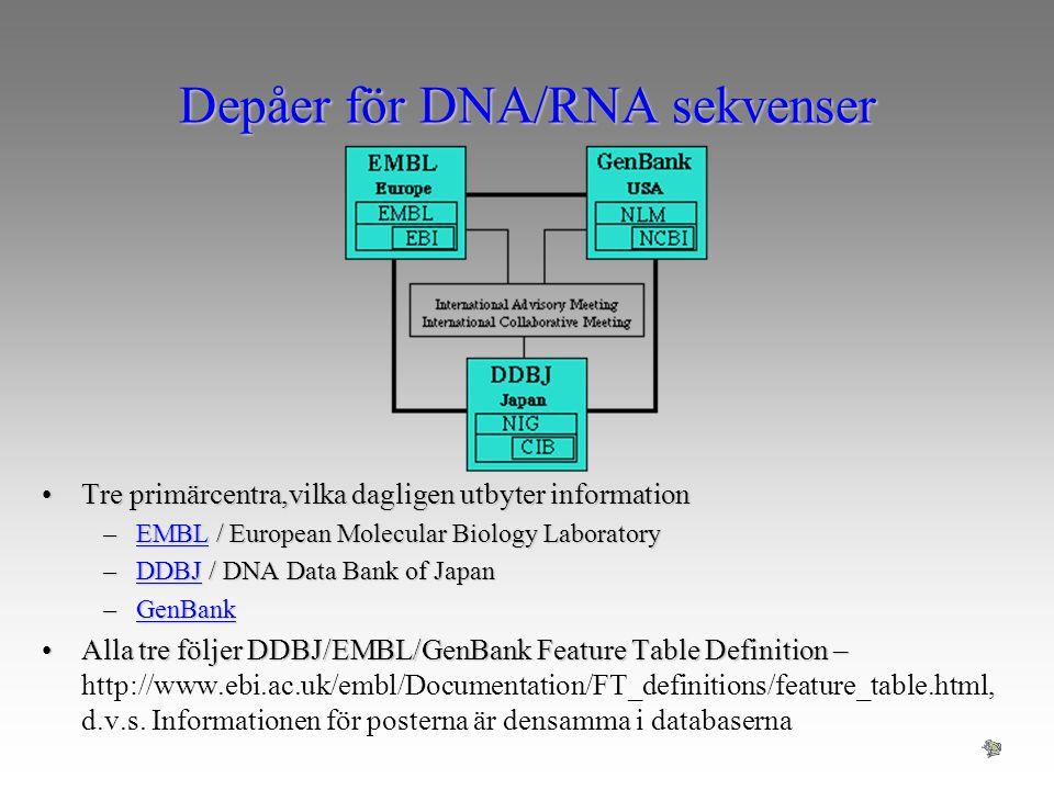 Depåer för DNA/RNA sekvenser Tre primärcentra,vilka dagligen utbyter informationTre primärcentra,vilka dagligen utbyter information –EMBL / European M