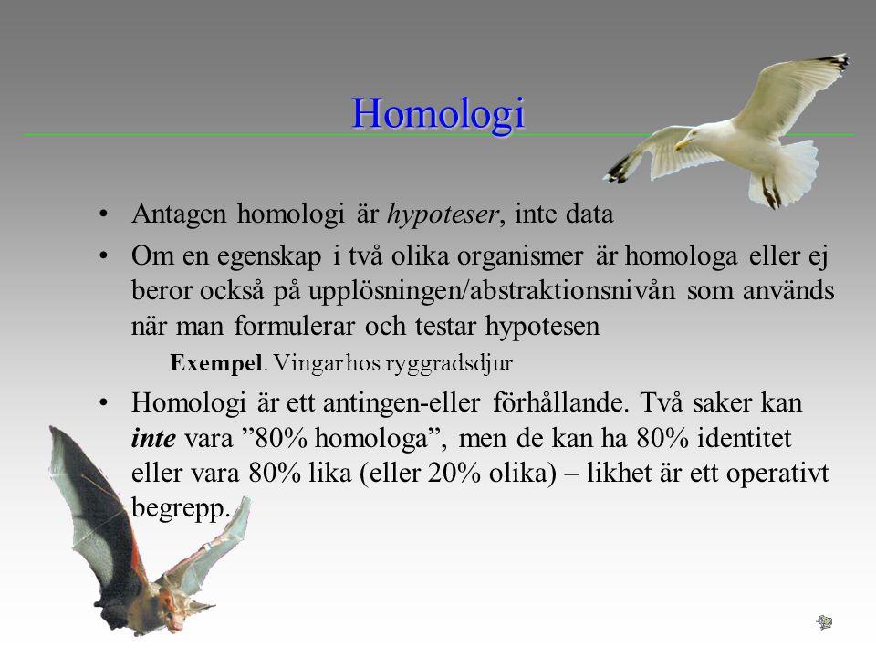 Homologi Antagen homologi är hypoteser, inte data Om en egenskap i två olika organismer är homologa eller ej beror också på upplösningen/abstraktionsn
